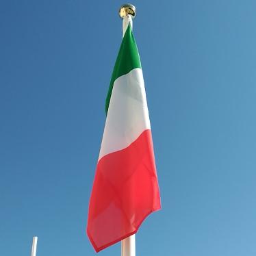 Alberi bandiera